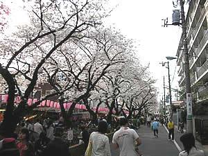 bunshimura200704-2.jpg